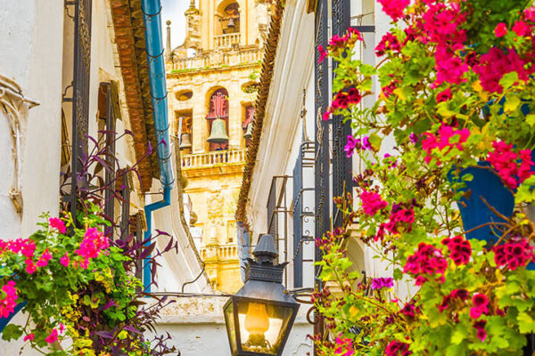 Bell tower of the mosque-cathedral in Cordoba with hanging geraniums in foreground
