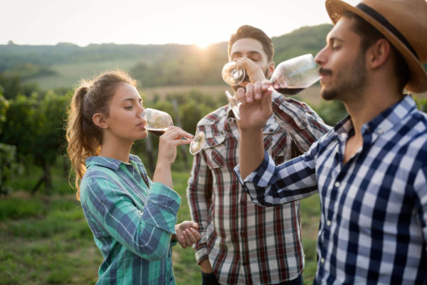 Young people drinking wine in vineyard, Spain